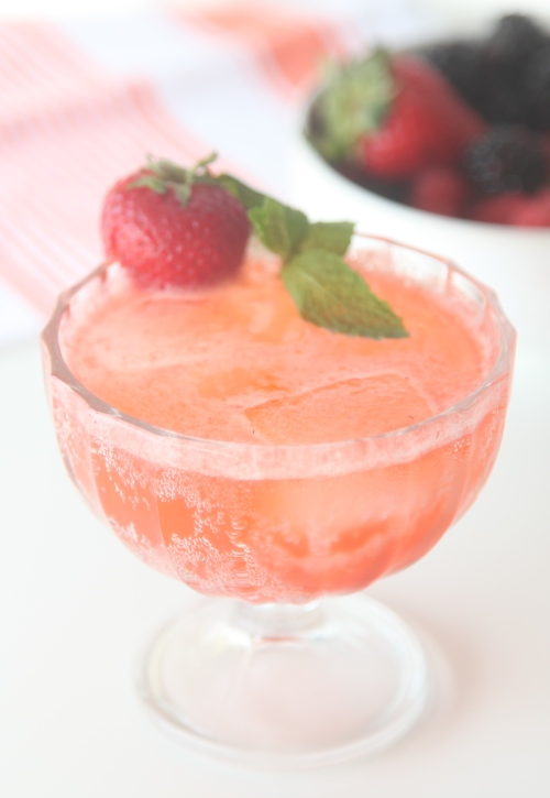 Berry Shrub